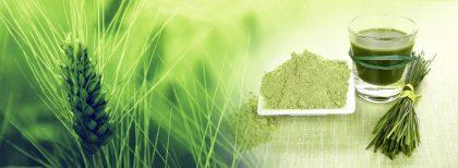 bionature-mlady-zeleny-jacmen-prasok-v-bio-kvalite-